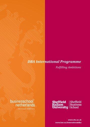 DBA International Programme - Business School Netherlands