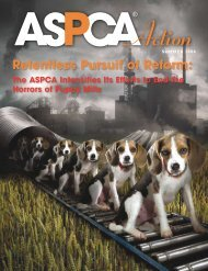 Summer 2008 - aspca