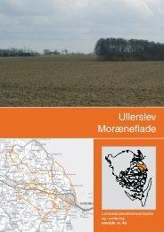 Landskabskarakterbeskrivelse og vurdering af Ullerslev ...