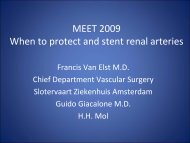 MEET 2009 When to protect and stent renal arteries