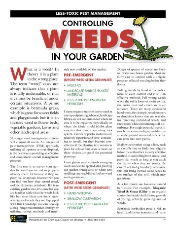 controlling weeds - Stover Seed Company