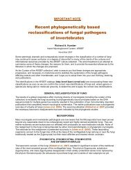 Recent phylogenetically based reclassifications of fungal pathogens ...