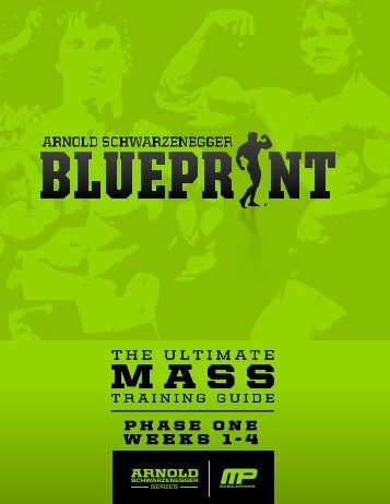 arnoldblueprint_mass_phaseone-v1.1