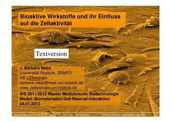 Vorlesung Phyto - Universität Rostock