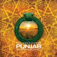 The Magnificent Punjab - Investment Guide 2012 - Punjab Board of ...