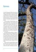 Estimativa da densidade de biomassa potencial com uso ... - SIGAM - Page 4