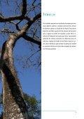 Estimativa da densidade de biomassa potencial com uso ... - SIGAM - Page 5
