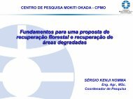 Fundamentos para uma proposta de recuperação florestal ... - SIGAM