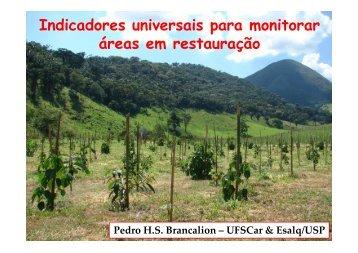 Indicadores universais para monitorar áreas em restauração - SIGAM
