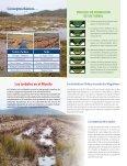 informativo inia_turbera - Page 2