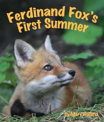 FerdinandFox-Preview.. - Sylvan Dell Publishing