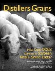 How does DDGS compare to soybean meal in swine diets?