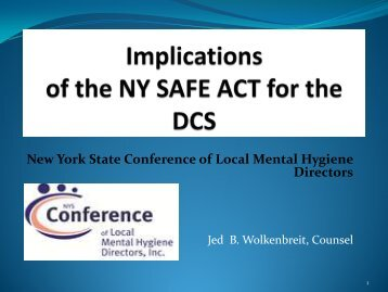 Implications of the NY SAFE Act for the DCS - New York State ...