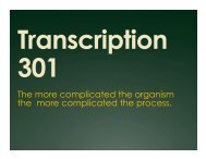 Transcription 301.pptx
