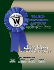 Production sale - Angus Journal