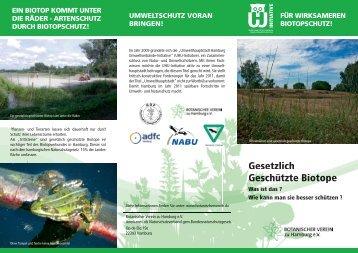 Ein Faltblatt - Botanischer Verein zu Hamburg