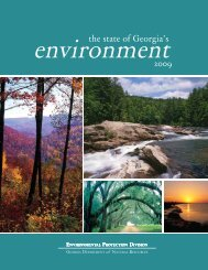The State of Georgia's Environment 2009 - Georgia Environmental ...