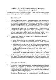 Richtlinien für die institutionelle Förderung von ... - LKJ SH eV
