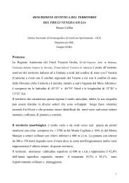 Descrizione sintetica del territorio del Friuli Venezia Giulia - Cami-Life