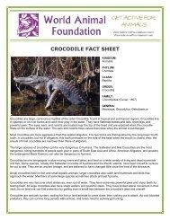 CROCODILE FACT SHEET - World Animal Foundation