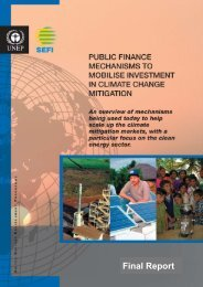 Public Finance Mechanisms to Mobilise Investment in ... - SEF Alliance