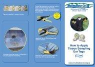 How to Apply Tissue Sampling Ear Tags - Animal Health Ireland