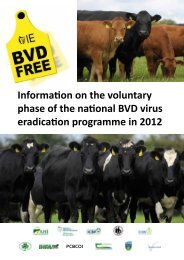 Information on the voluntary phase of the national BVD virus ...