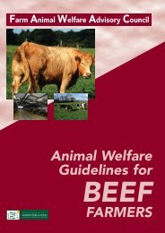 Animal Welfare Guidelines for Beef Farmers 2003 - Farm Animal ...