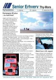 nyhedsbrev 25 a copy.indd - Senior Erhverv Danmark