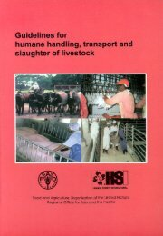 Guidelines for humane handling, transport and slaughter of