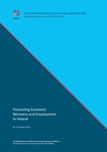 Promoting Economic Recovery and Employment in Ireland