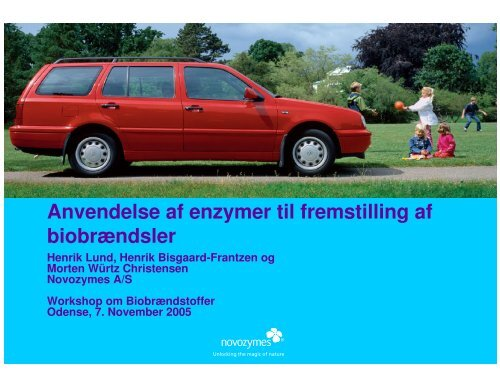 Anvendelse af enzymer til fremstilling af biobrændsler