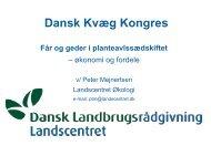 Dansk Kvæg kongres, Får & Geder, Optimal ... - LandbrugsInfo