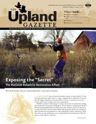 The Upland Gazette Fall 2012, Volume 17, Issue 2 - North Carolina ...