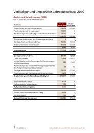 Vorläufiger und ungeprüfter Jahresabschluss 2010 - Pfleiderer AG