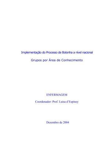 Implementação do Processo de Bolonha a nível nacional Grupos ...