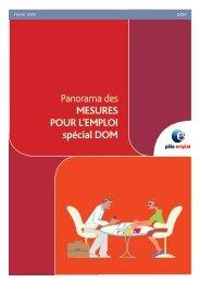 Panorama des mesures pour l'emploi (DOM) - Février ... - Handiplace