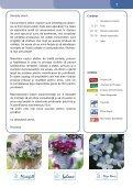 Florensis - Agro Pataki - Page 3