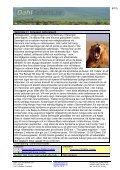 Safari i Afrika, Tanzania - Dahl Safaris - Page 6