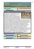 Safari i Afrika, Tanzania - Dahl Safaris - Page 7