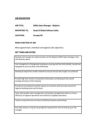 sales consultant job description