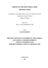 THESIS OF THE DOCTORAL (PhD) DISSERTATION