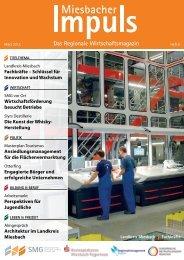 Miesbacher Impuls Heft 8 - Schwerpunkt Fachkräfte - SMG