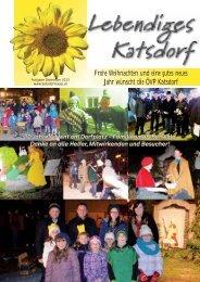 Dezember 2013 (pdf) - oevp katsdorf