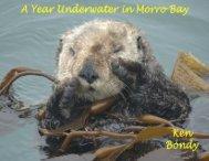 A Year Underwater in Morro Bay - Ken Bondy