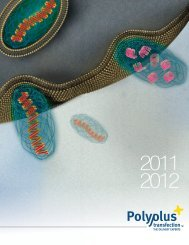 Poly+ catalog 2011.indd