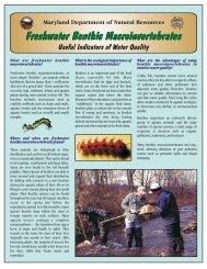 Freshwater Benthic Macroinvertebrates - Maryland Department of ...