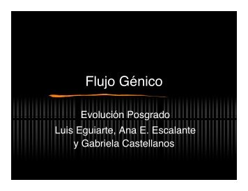 Presentación 11. Flujo génico