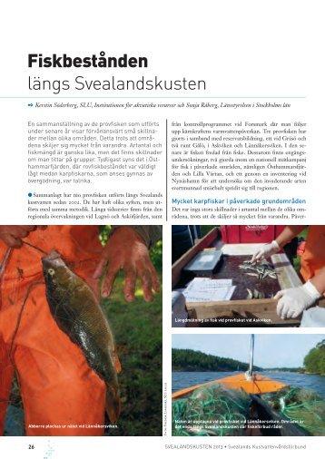 Svealandskusten 2013 - Havet.nu