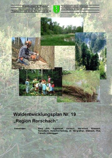 Bericht WEP Rorschach (3166 kB, PDF) - im St.Galler Wald - Kanton ...